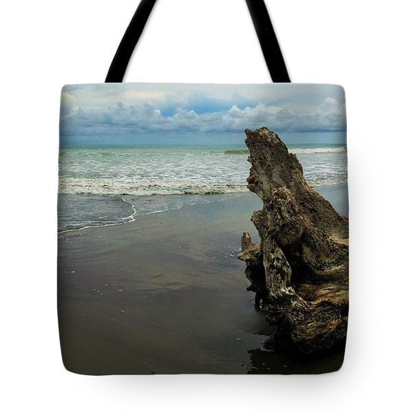 Guarding The Shore Tote Bag by Pamela Blizzard