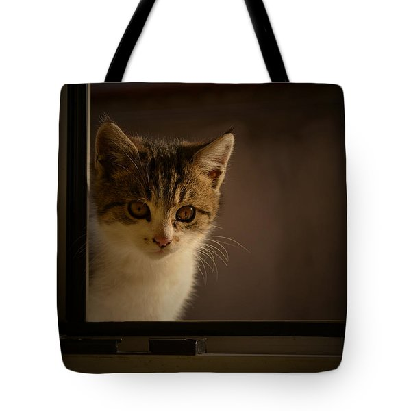 Guest On The Window Tote Bag