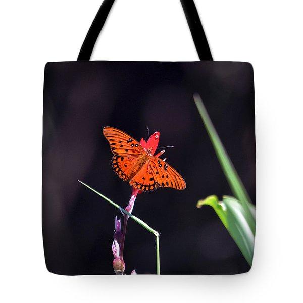 Gulf Fritillary Butterflyl Tote Bag