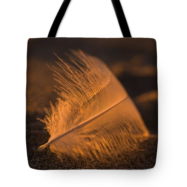 Gull Feather At Sunset Tote Bag