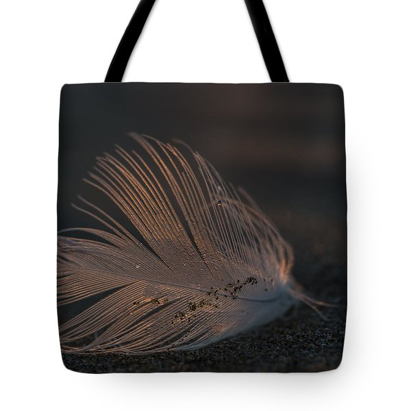 Gull Feather On A Beach Tote Bag