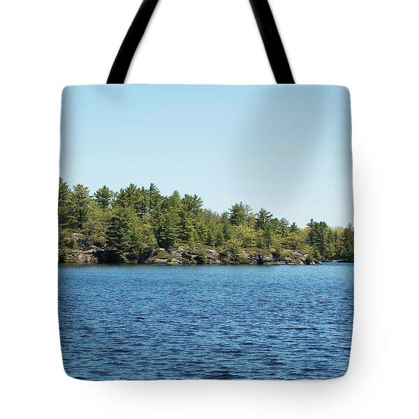 Gull Lake Tote Bag