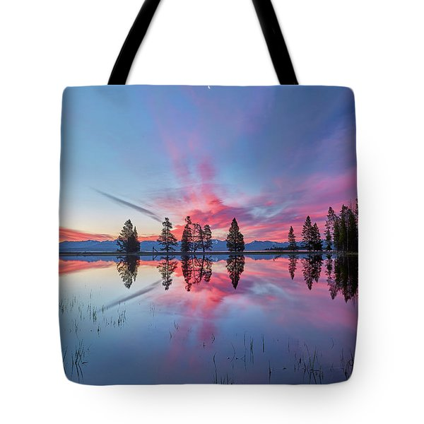 Gull Point At Sunrise Tote Bag