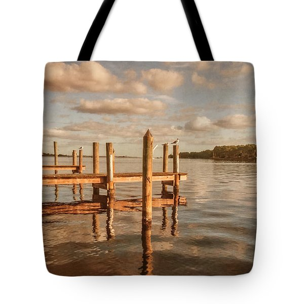 Gull Watching Tote Bag by Phillip Burrow
