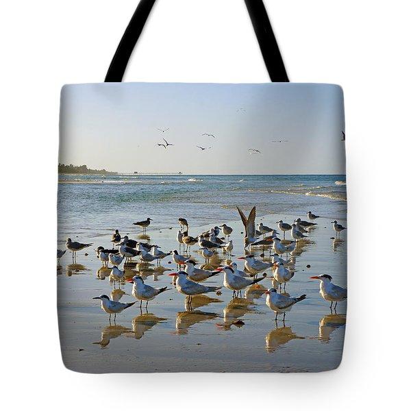 Gulls And Terns On The Sanbar At Lowdermilk Park Beach Tote Bag