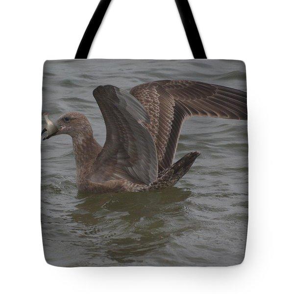 Gull's Catch Tote Bag