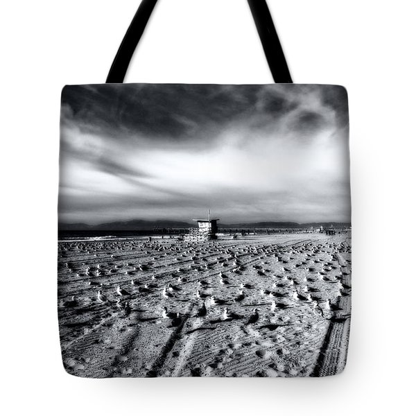Tote Bag featuring the photograph Gulls On Beach by Michael Hope