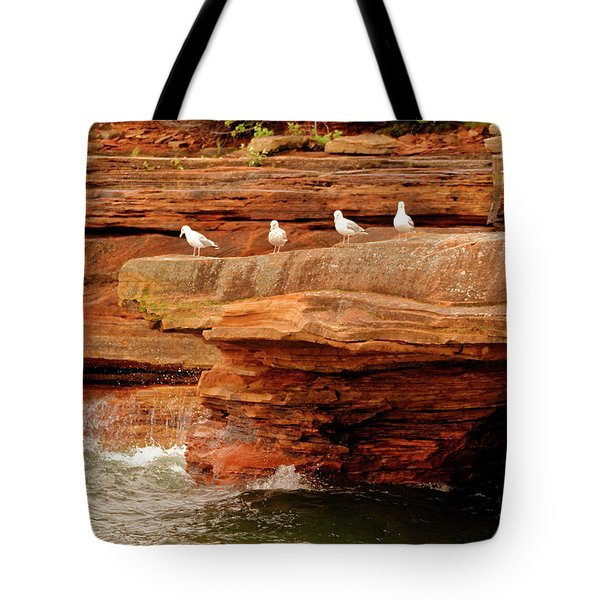 Gulls On Outcropping Tote Bag