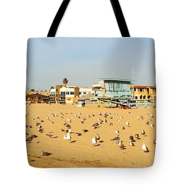 Gulls On Sand Tote Bag
