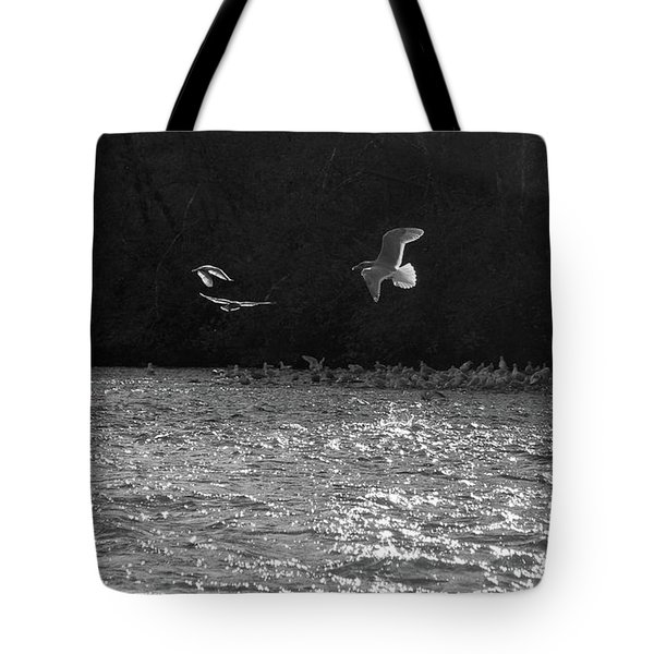 Gulls On The River Tote Bag