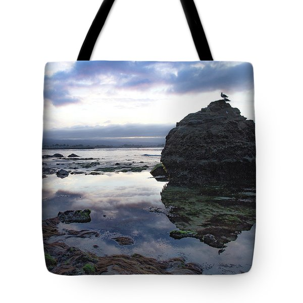 Tote Bag featuring the photograph Gulls With Clouds by Lora Lee Chapman