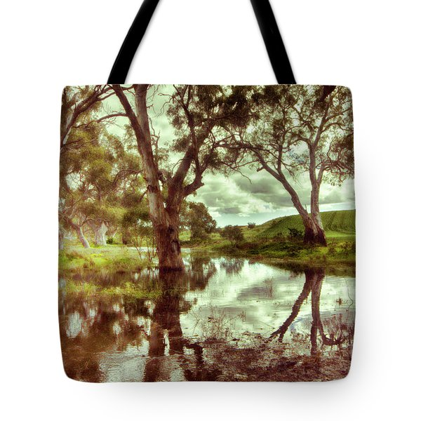 Tote Bag featuring the photograph Gum Creek V2 by Douglas Barnard