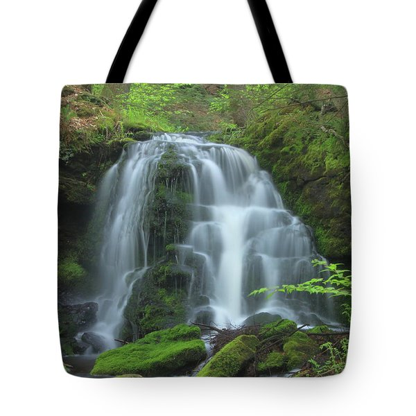 Gunn Brook Slip Dog Falls Mount Toby Tote Bag by John Burk