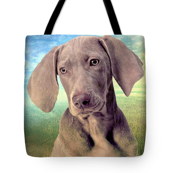 Gunshy Weimaraner Looking For Loving Home Tote Bag