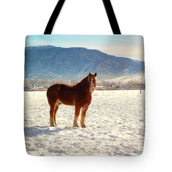 Tote Bag featuring the photograph Gus by Deborah Moen