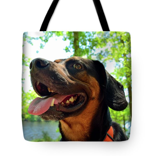 Gus On A Hike Tote Bag