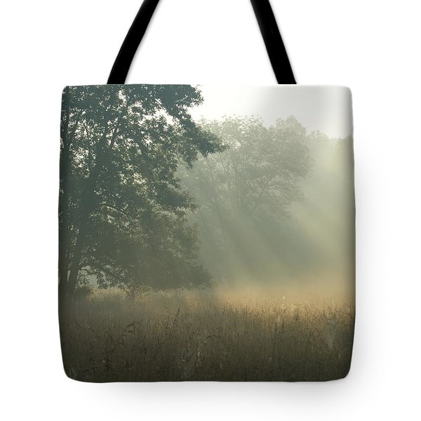 Tote Bag featuring the photograph Guten Morgen by Heidi Poulin