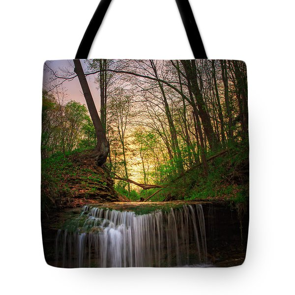 Gypsy Glen  Rd Waterfall  Tote Bag