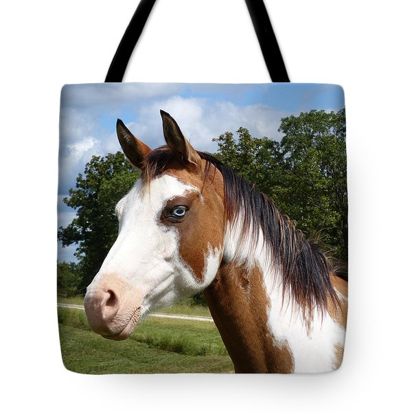 Gypsy Paint Tote Bag