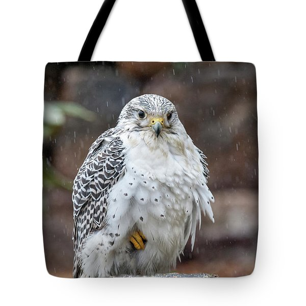 Gyrfalcon A Bird Of Prey Sitting In The Rain Tote Bag