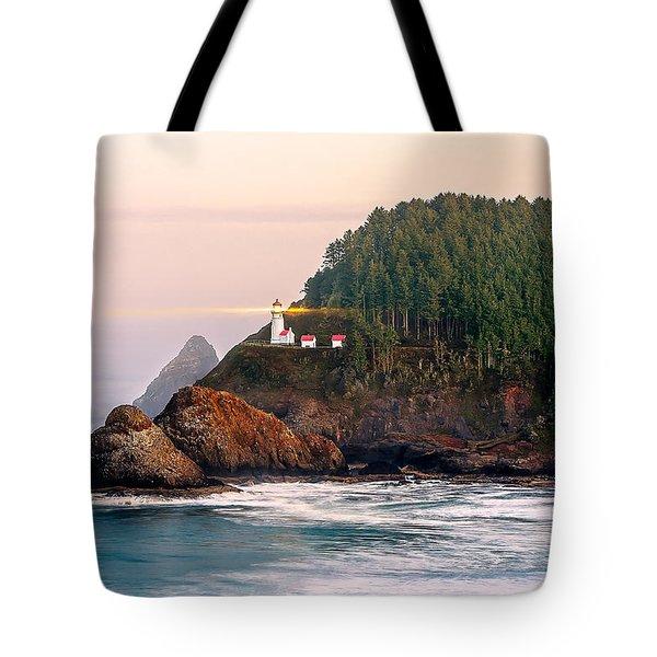 Haceta Head Light Tote Bag by Todd Klassy