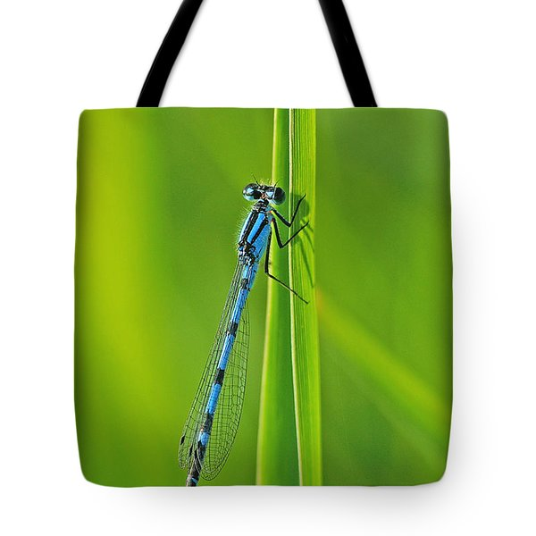 Hagens Bluet Tote Bag by Bill Morgenstern