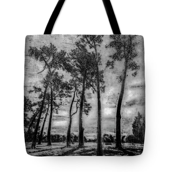 Hagley Park Treescape Tote Bag