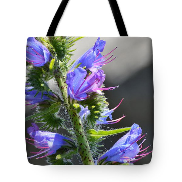 Hairy Flower  Tote Bag by Lyle Crump