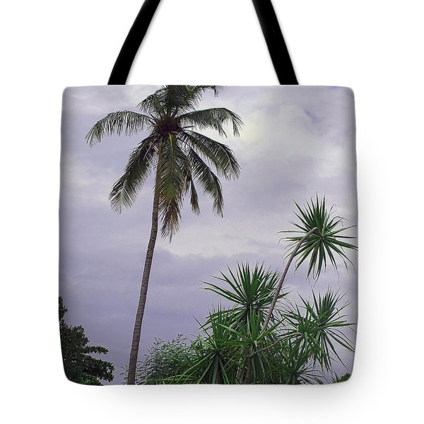 Haiti Where Are All The Trees Tote Bag by B Wayne Mullins