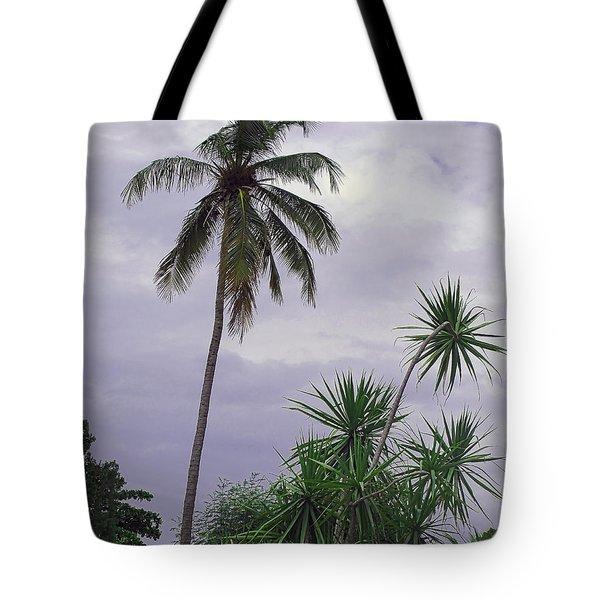 Haiti Where Are All The Trees Tote Bag
