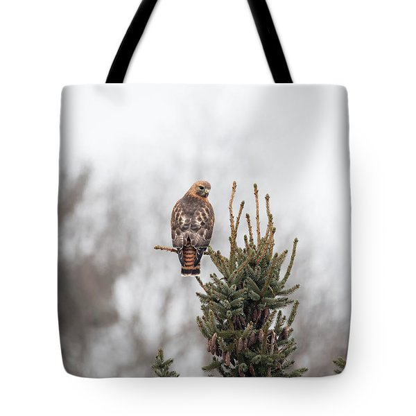 Hal Hanging Out 2 Tote Bag