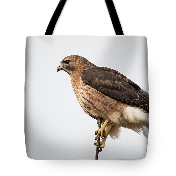 Hal The Hybrid Portrait 2 Tote Bag