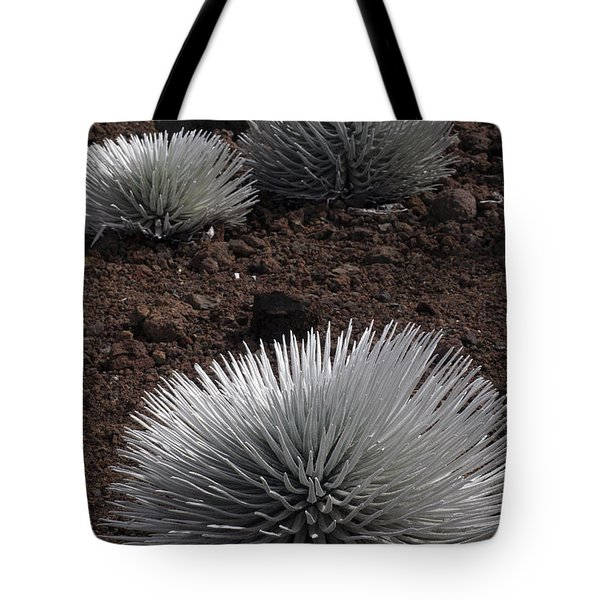 Haleakala Silverswords Tote Bag