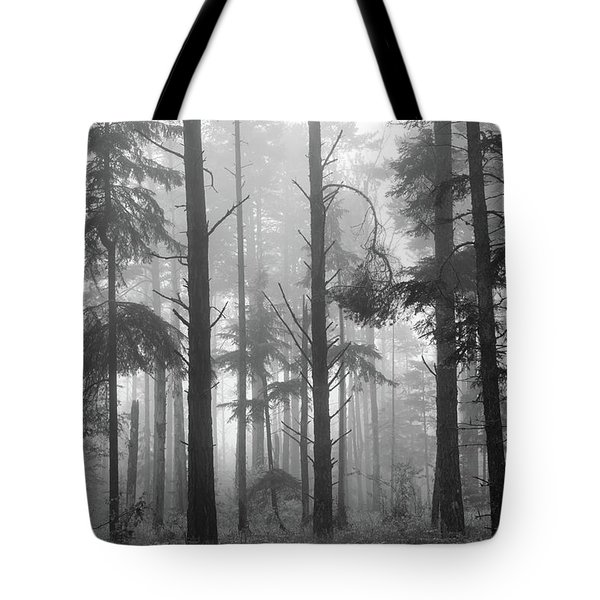 Tote Bag featuring the photograph Half Century by Mary Amerman