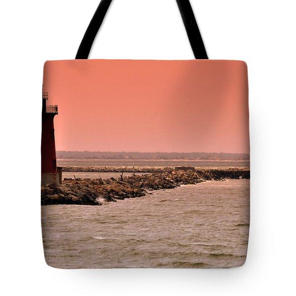 Halladay Tote Bag by Trish Tritz