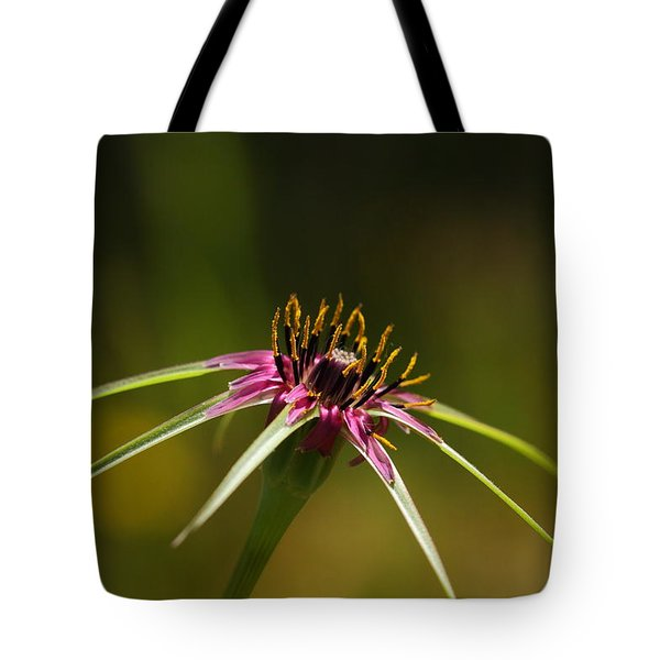 Tote Bag featuring the photograph Hallelujah by Richard Patmore