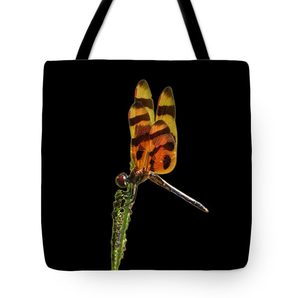 Tote Bag featuring the photograph Halloween Pennant Dragonfly .png by Al Powell Photography USA