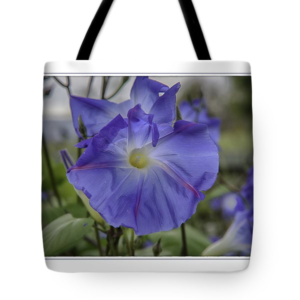 Tote Bag featuring the photograph Hameau Bleu by R Thomas Berner