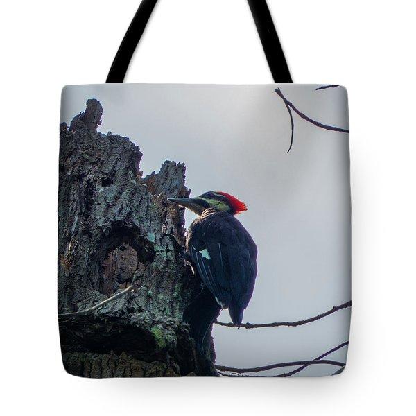 Hammering It Home Tote Bag by Kimo Fernandez