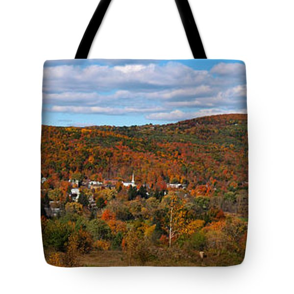 Hammondsport Panorama Tote Bag