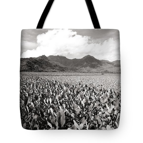 Hanalei Taro Fields Tote Bag by Bob Abraham - Printscapes