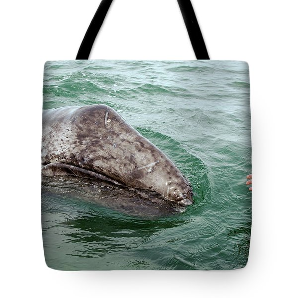 Hand Across The Waters Tote Bag