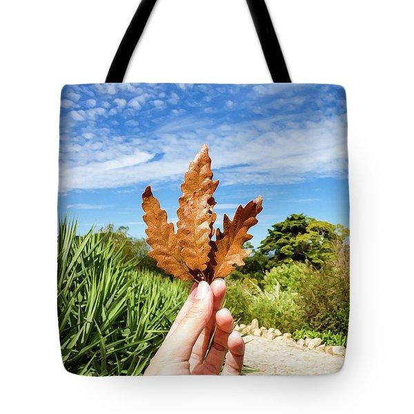 Hand Holding A Beautiful Oak Leaf Tote Bag