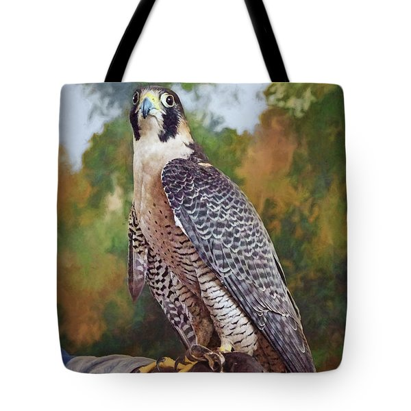Tote Bag featuring the photograph Hand Of The Falconer by Nikolyn McDonald