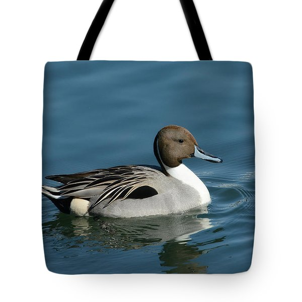Tote Bag featuring the photograph Handsome Drake by Fraida Gutovich