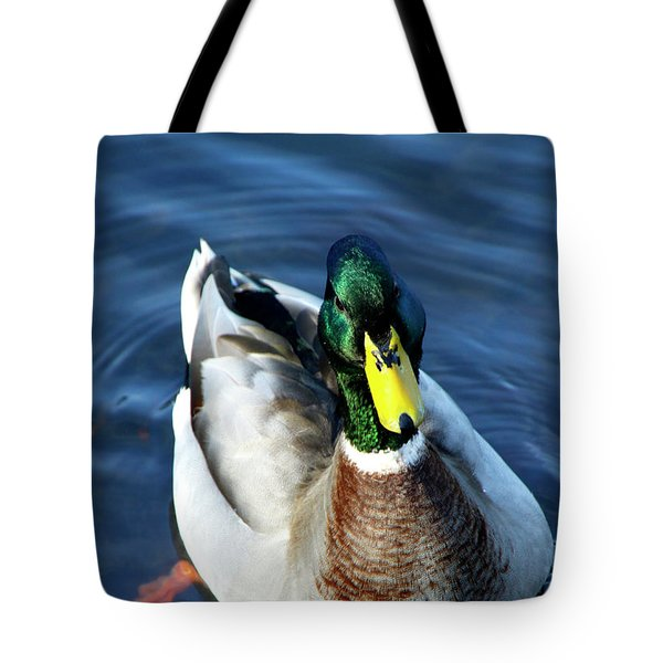 Handsome Male Mallard Tote Bag