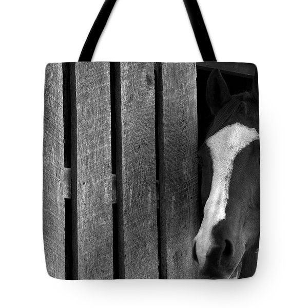 Handsome T Tote Bag