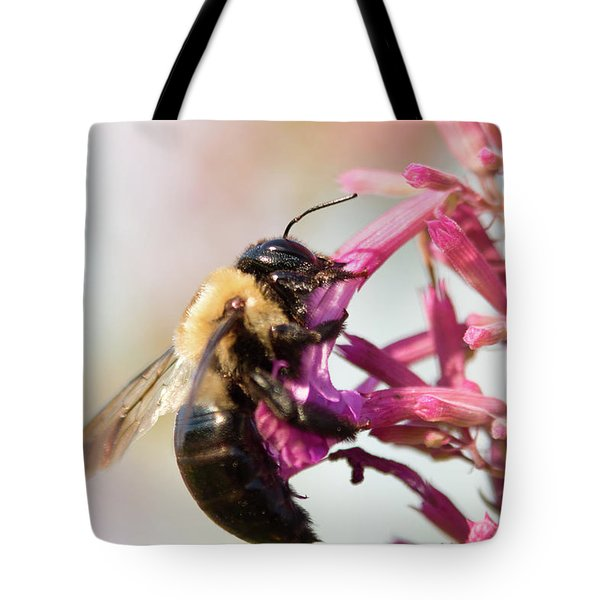 Tote Bag featuring the photograph Hang In There by Brian Hale
