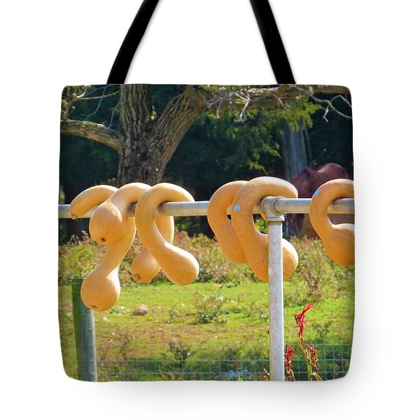 Hang In There Tote Bag by Jeanette Oberholtzer