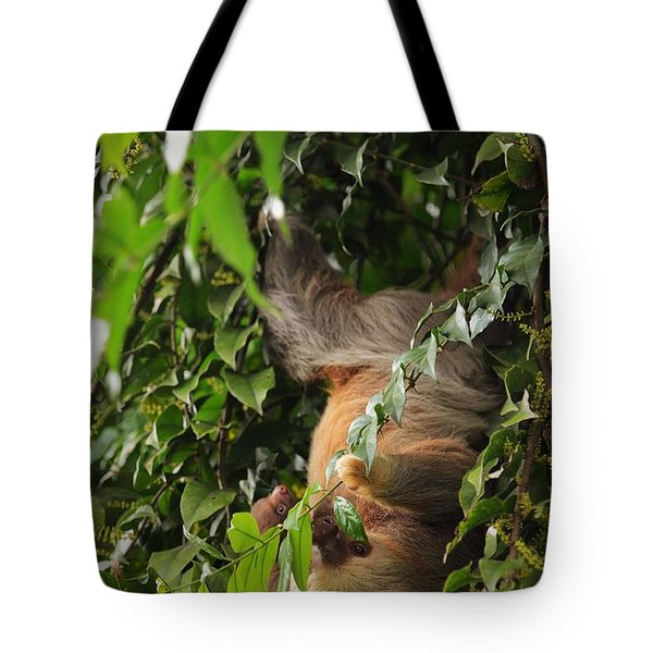 Hang On Mom Tote Bag by Pamela Blizzard